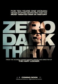 Zero Dark Thirty (2012) BRRip 480p 425MB Dual Audio