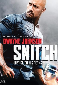 Snitch (2013) BRRip 420p 300MB Dual Audio