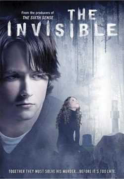 The Invisible (2007) BRRip 420p 300MB Dual Audio