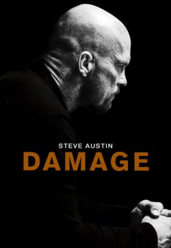 Damage (2009) 420p 300MB Dual Audio
