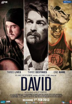 David (2013) Hindi Movie 400MB DVDRip 420P ESubs