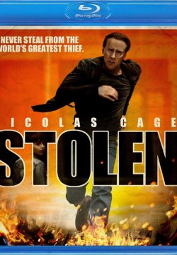 Stolen (2012) BRRip 420p 300MB Dual Audio