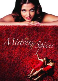 The Mistress of Spices (2005) BRRip 300MB Dual Audio 1