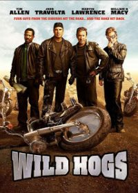 Wild Hogs (2007) BRRip 420p 300MB Dual Audio 1