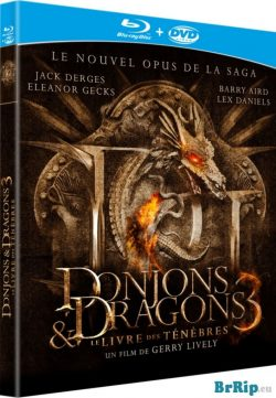 Dungeons & Dragons 3 (2012) Dual Audio