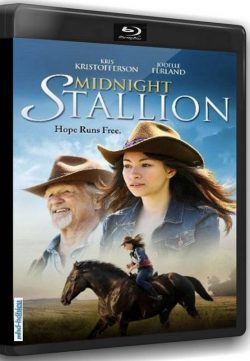 Midnight Stallion (2013) Watch Online