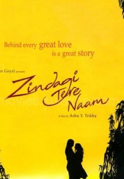 Zindagi Tere Naam (2012) 300MB Movie Downloade