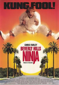 Beverly Hills Ninja (1997) [Dual Audio] [Hindi-English] DVDRip