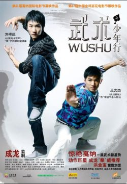 Wushu 2008 Hindi Dubbed Movie Watch Online free