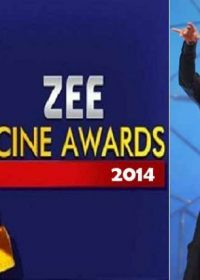 14th Zee Cine Awards (2014) HDTVRip 700MB Free Download 2