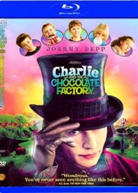 Charlie and the Chocolate Factory 2005 Dual Audio 720p 850mb Download 1