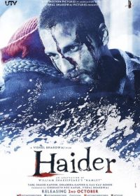 Haider (2014) Hindi Movie watch Online For Free In HD 480p Free Download 1