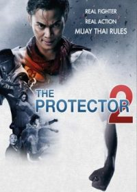 The Protector 2 (2013) Dual Audio Free Download In HD 480p 300MB 1