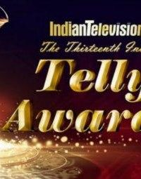 13th Indian Telly Awards (2014) Free Download In HD 480p 250MB 1