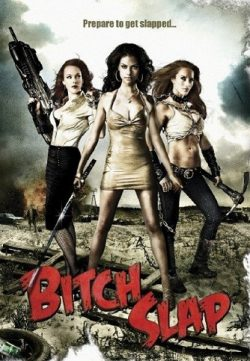 Bitch Slap (2009) Hindi Dubbed Download 300MB 480p