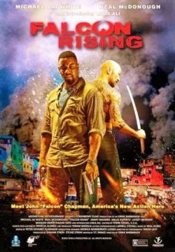 Falcon Rising (2014) hindi dubbed download HD 200MB 480p