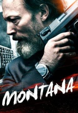 Montana (2014) Hindi Dubbed Download HD 480p 250MB