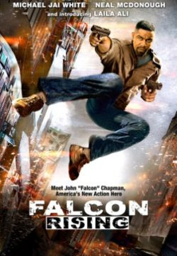 Falcon Rising (2014) Hindi Dubbed Download 200MB 480p
