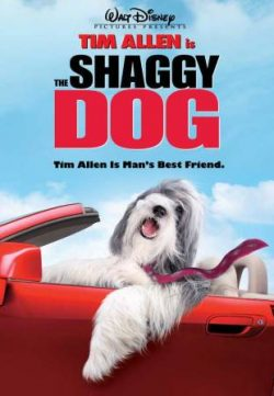 The Shaggy Dog (2006) Hindi Dubbed 250MB