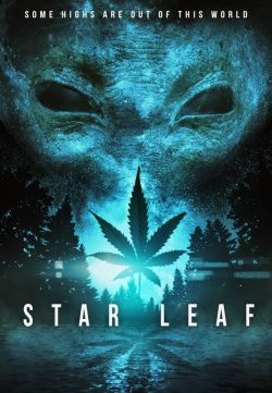 Star Leaf (2015) HDRip 480p 200MB