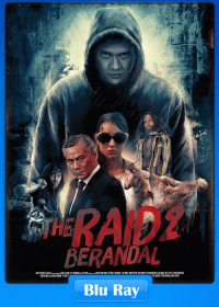 The Raid 2 2014 Dual Audio 480p BluRay 450MB
