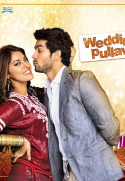 Wedding Pullav 2015 Hindi Movie 300MB DVDRip