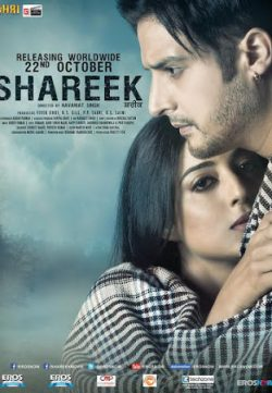 Shareek (2015) Punjabi Movie BlueRay 480p
