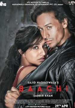 Baaghi (2016) Watch Hindi Full Movie DVDRip Online