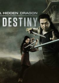 Crouching Tiger Hidden Dragon Sword of Destiny (2016) 480p DVDRip