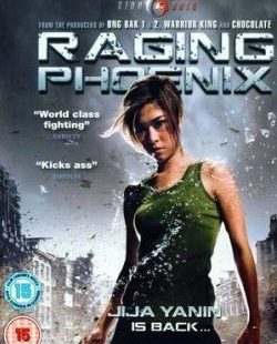 Raging Phoenix (2009) Dual Audio DVDRIp Download 400MB