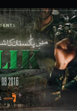 Maalik (2015) Pakistani Movie DVDScr 700MB