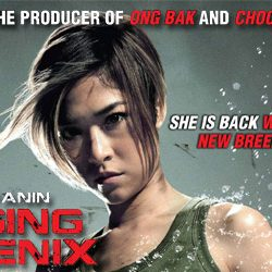 Raging Phoenix (2009) hindi Dubbed 400MB HDRIp 480p