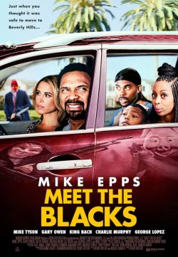 Meet the Blacks (2016) TSRip 600MB