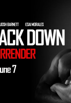 Never Back Down No Surrender (2016) English DVDRip 300MB