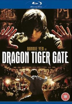 Dragon Tiger Gate 2006 Hindi Dubbed BRRip 480p