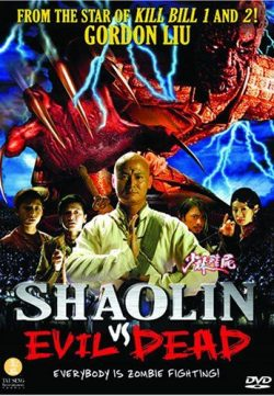 Shaolin Vs Evil Dead 2004 Hindi Dubbed DVDRip 300MB