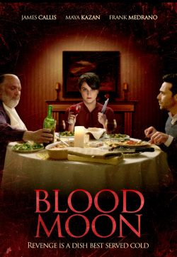 Blood Moon 2016 English 720p BluRay 800mb