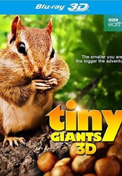 Tiny Giants 2014 English 720p BRRip 200MB