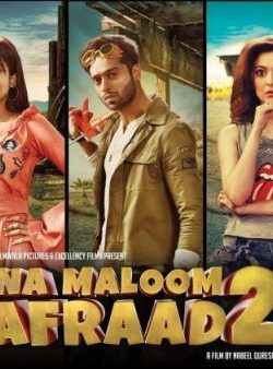 Na Maloom Afraad 2 (2018) Urdu 720p HDRip 800MB