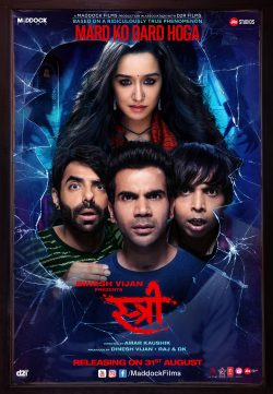 Stree 2018 Hindi 300MB HDRip 480p x264 ESubs