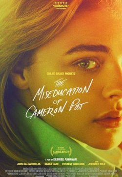 The Miseducation of Cameron Post (2018) English 250MB WEB-DL 480p