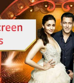 Star Screen Awards 31st December 2018 400MB HDTV 480p