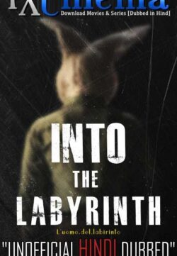 Into the Labyrinth (2019) Hindi Dubbed 720p HDCAM 720p 950MB